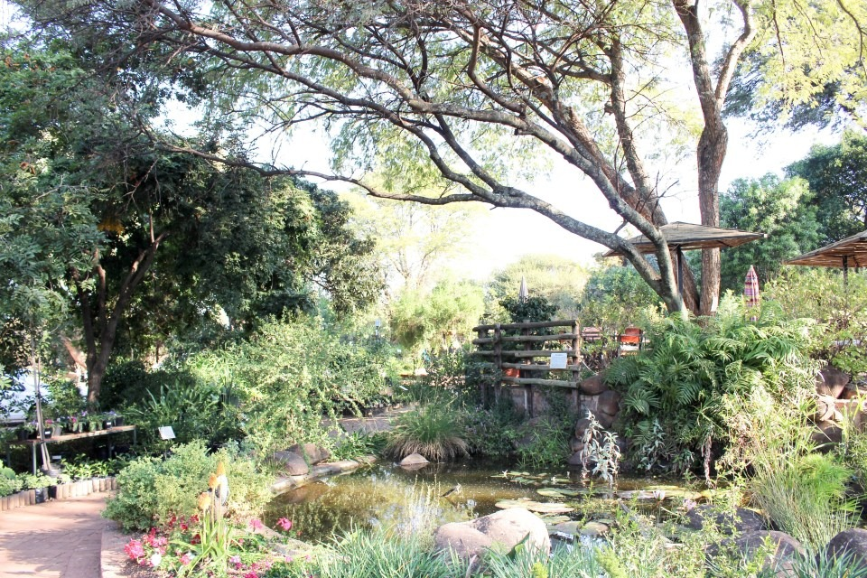 Random Harvest Nursery - Gardens of the Golden City: See Joburg's most spectacular gardens this Spring